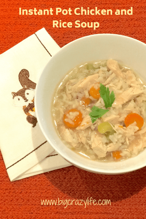 Quick and Easy Instant Pot Chicken Soup
