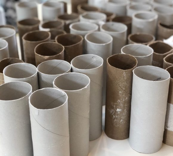 Toilet Paper Rolls for Crafts