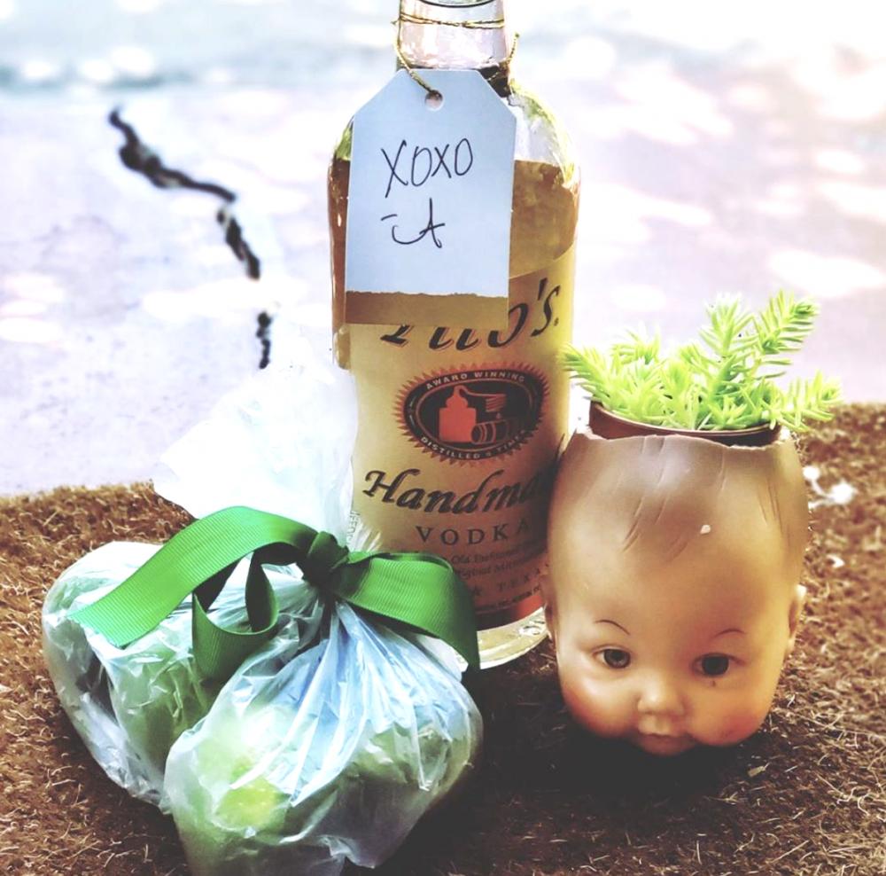 baby head succulent