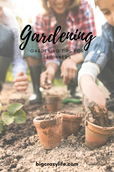 planing a garden